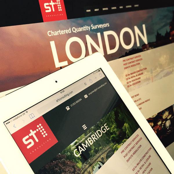 Baboon Creative websites Nottingham - ST1 Consulting website design