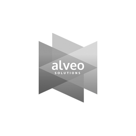 Baboon Creative - Branding and Logo Design - Alveo Solutions Ltd